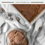 overhead shot of glass bowl and tin pan of gelato