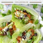 overheat shot of three Greek chicken lettuce wraps on white plate