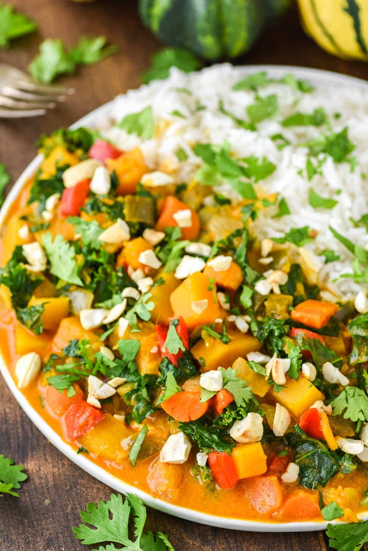 butternut squash curry with rice on white plate