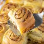 orange roll on spatula above rolls in baking dish