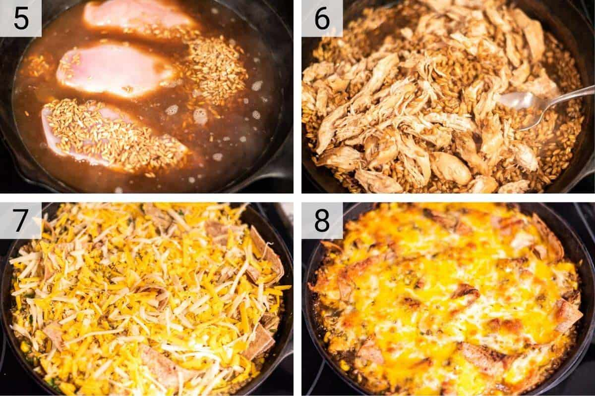 process shots of cooking chicken before adding farro, salsa verde and cheese and baking