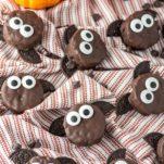 halloween bat treats on dish towel