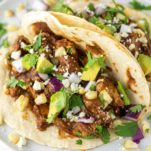 two mole tacos on white plate