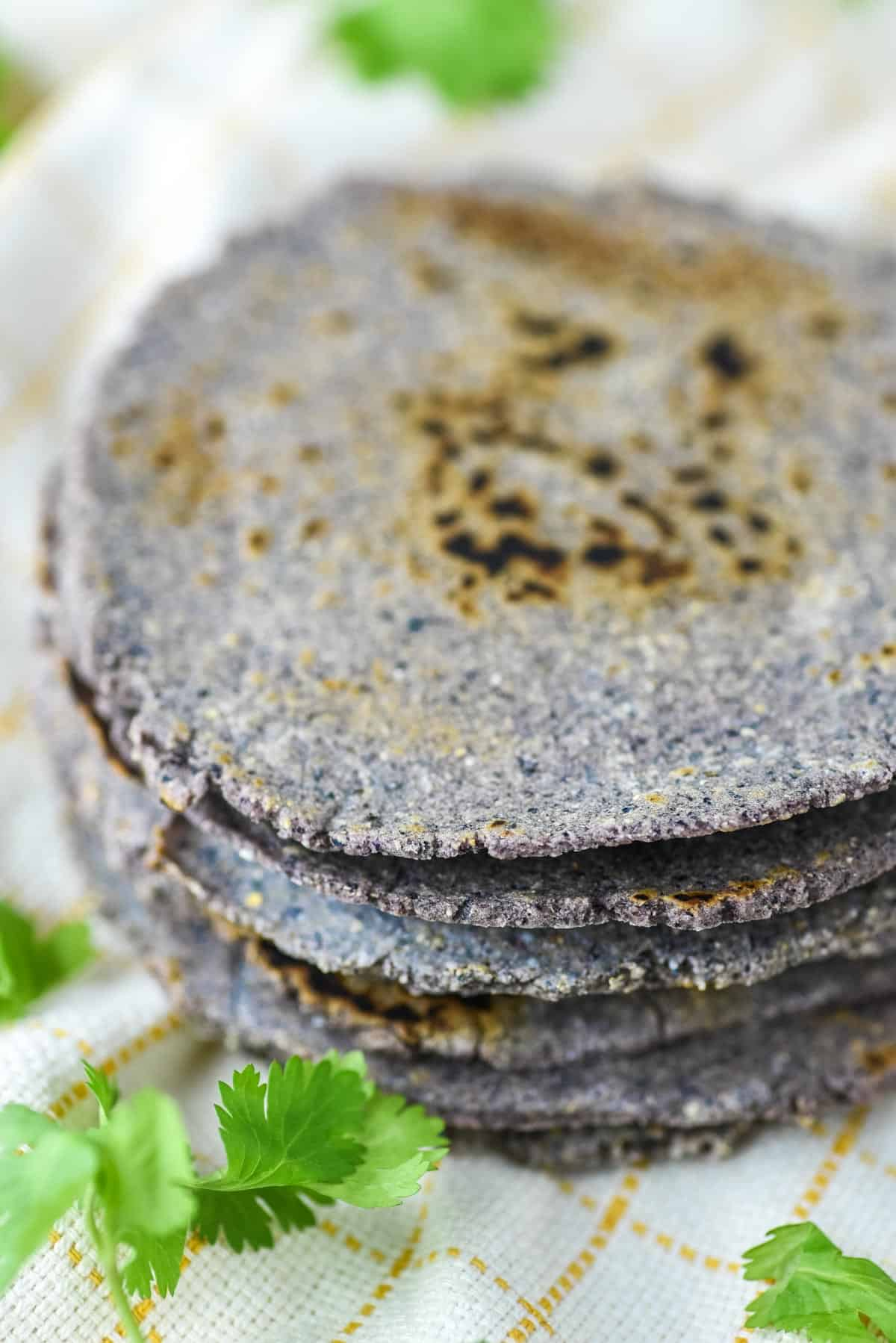 close-up of stacked blue corn tortillas on dish towel