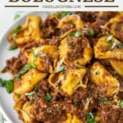 tortellini tossed in bolognese sauce on white plate