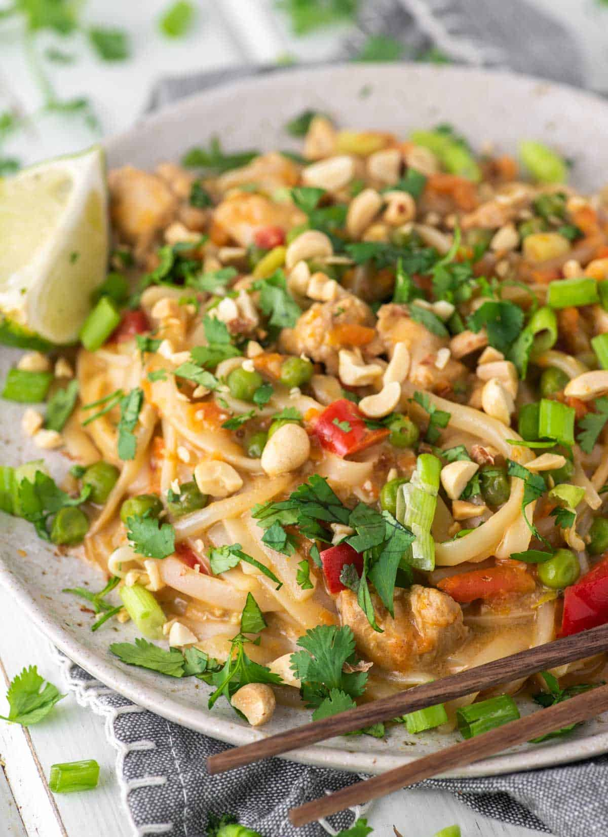 Instant Pot Pad Thai on speckled plate
